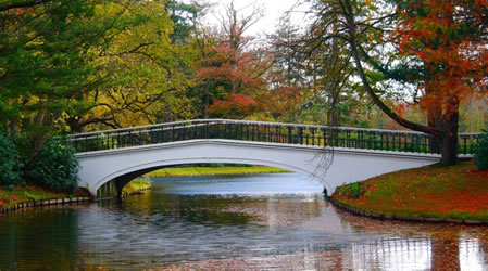 bridge over water in a park