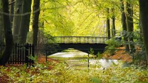 Mediator-Apeldoorn-Paleispark-Het-Loo-Mediator-Apeldoorn